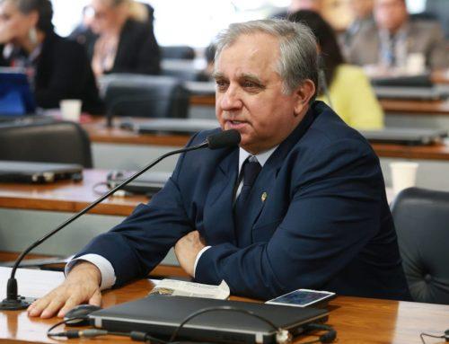 Comissão de Educação aprova criação da Comenda Cora Coralina